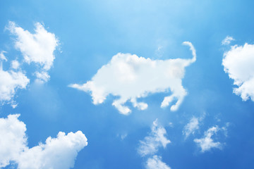 bull clouds shape on sky.