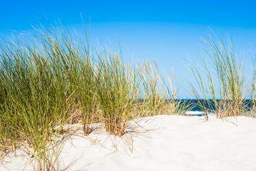 Fototapeta Landscape with sea view, sand dune and grass, blue sky. Leba, Baltic sea, Poland.