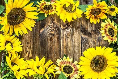Sunflowers On Rustic Wood Background Flowers Backgrounds