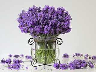 Bouquet of lavender flowers in a vase on a white background. Romantic floral still life with bouquet of lavander.