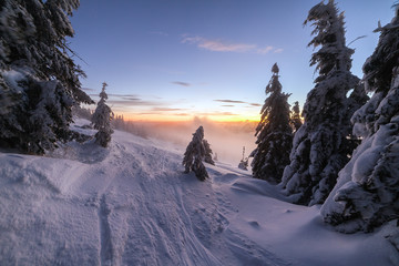 Winter landscape. Sunrise in the mountains. Beautiful World. Christmas scene. Carpathians, Ukraine, Europe