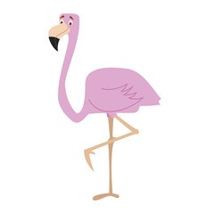 Cute cartoon flamingo vector illustration