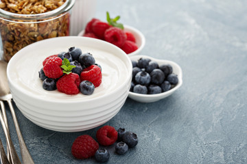 Natural yogurt in a bowl with berries