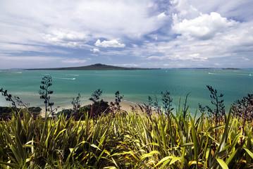 Rangitoto Island, Waitemata Harbor,Auckland City, New Zealand