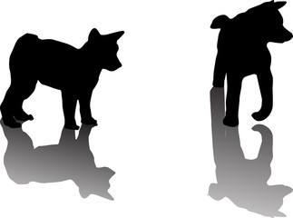 two puppy silhouettes with shadows on white