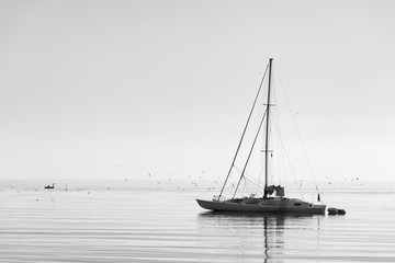 Catamaran floating  on calm water in the morning at mediterranean sea. Black and white photography