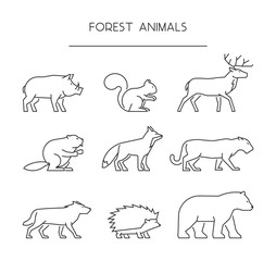Line set of forest animals. Linear silhouettes animals isolated