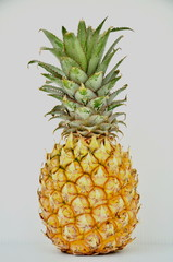 Pineapple pattern on white background