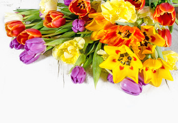 Happy Easter: Colorful tulips :)