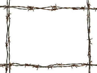 frame made of barbed wire
