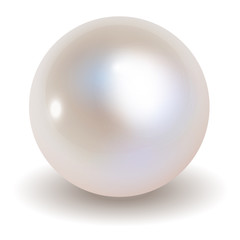 Pearl vector on white background.