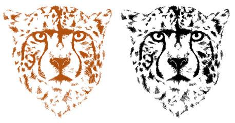 Wall Mural - cheetah heads