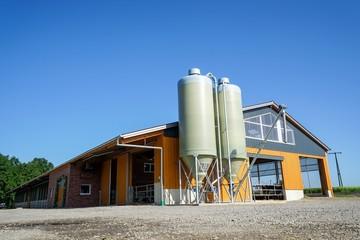 Milcherzeugung - Neuer, moderner Kuhstall in der Morgensonne