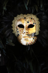 Venetian carnival mask with feather