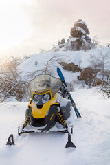 Snowmobile and skiing