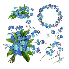 Forget-me-not flowers setŒ