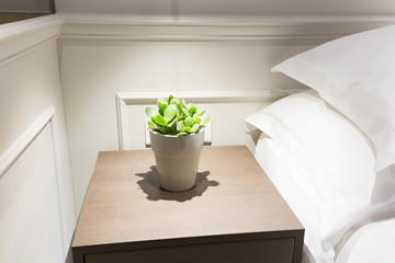Small plant in flowerpot on a night table next to a bed