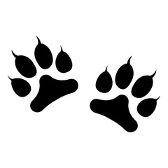 Animals footprints with claws isolated on white background. Vector illustration