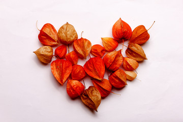 Heart of dried flowers on a white background