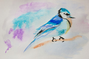 Watercolor painting. Blue bird on a branch.