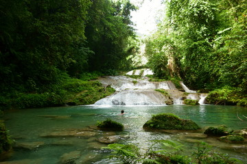 Unidentified female tourist swimming in the water at Reach Falls waterfalls which are one of the most popular tourist destinations and attractions in Portland parish, Jamaica.