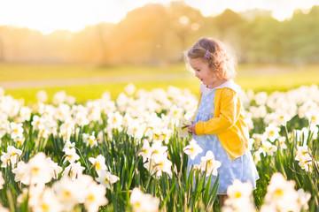 Wall Mural - Little girl in daffodil field