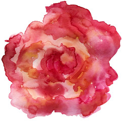 Abstract rose isolated on white background. Watercolor painting