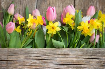 Frühlingsmotiv Tulpen u. Narzissen