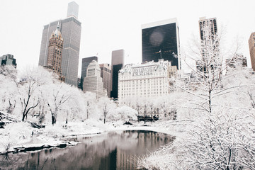 Central Park after a Snow Storm, New York