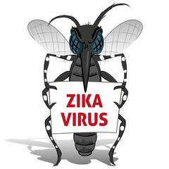 Aedes aegypti Mosquito stilt holding poster Zika virus