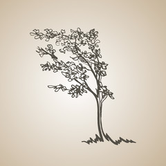 Sketched tree in the wind. hand drawn illustration