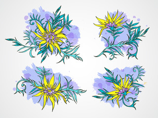 Vector set of hand drawn flowers, branches and leaves with textured watercolor element.