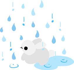 A rabbit and rain