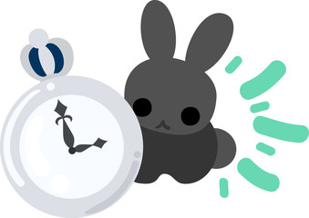 A rabbit and a watch