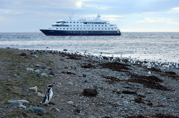 Cruise ship  at the Chilean island of Magdalena.