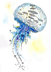Watercolor and Ink Jellyfish Painting