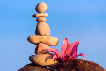 Lily and stack of stones