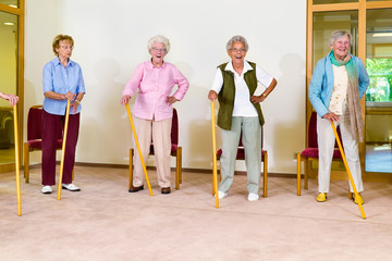 Four elderly females exercising with canes.
