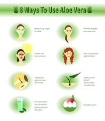 Aloe Vera infographic.Aloe Uses.