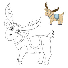 deer color and contour vector illustration