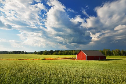 Panoramic view of the agricultural field, forest, wooden warehouse. Sweden. Traditional scandinavian architecture, falu red dye. Dramatic cloudscape. Idyllic rural scene. Farm, alternative production