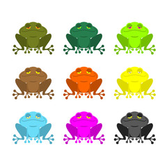 frog color Set . Colored toads. Woody Orange frog. Yellow and bl