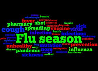 Flu season, word cloud concept 5