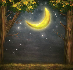 Illustration of a forest and fantastic moon with  stars   at night sky