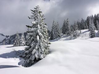 Neige Isère France