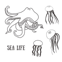 Monochrome set with octopus and jelly-fish.