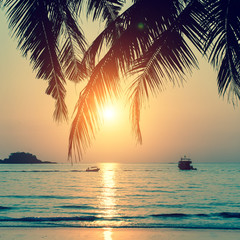 Tropical beach during a beautiful sunset.