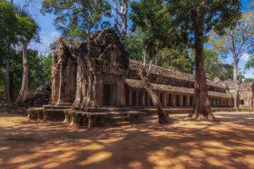 SIEM REAP, CAMBODIA. Ancient Khmer architecture. Ta Prohm temple with giant banyan tree at Angkor Wat complex.