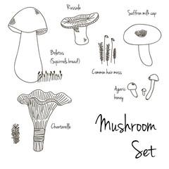 Mushroom and moss monochrome vector set.