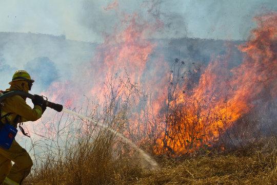 Wildland Firefighter fighting grass fire